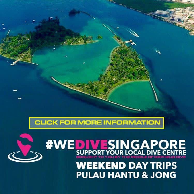 weekend day trip pulau hantu singapore souther islands diving